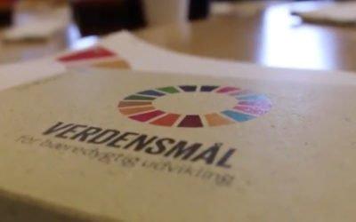 FN´s 17. verdensmål er et stærkt kort mod nethandlen